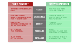 mindset-fixed or growth